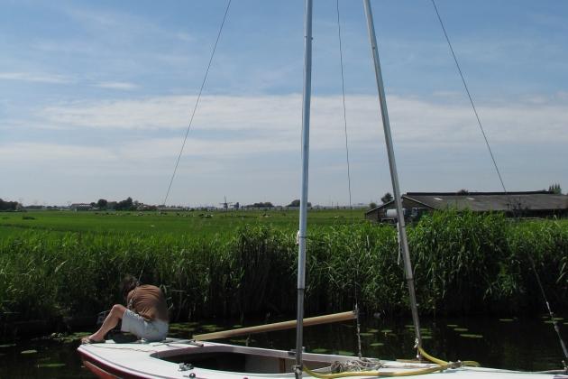 Steady Sail